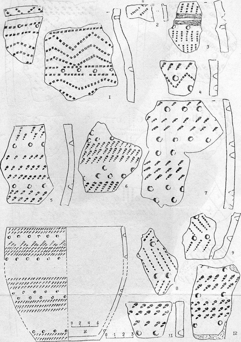 Рис. 1. Ранняя гребенчато-ямочная керамика (1—3 — Тух-Эмтор IV); развитая гребенчато-ямочная керамика (4 — Молодежное, 5—7 — Большой Ларьяк III, 8-9 Шаманский мыс, 10—12 — Большой Ларьяк II)