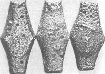 Рис. 19. Київські гривні
