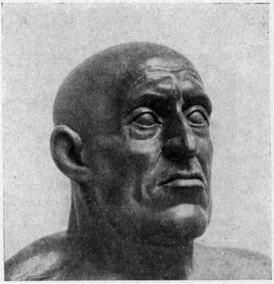Рис. 51. Реконструкция портрета Ивана Грозного (начальный этап)