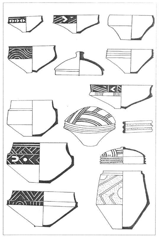 Рис. 17. Керамика гумельницкой культуры. Темными зонами на поверхности посуды показана роспись графитом [Vajsova H., 1969].