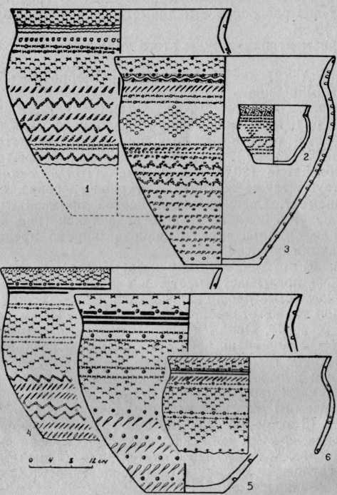 Рис. 3. Жертвенное место Хутор Бор-1. 1—6 — сосуды I типа группы А