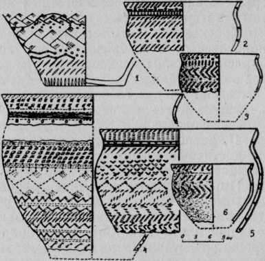 Рис. 4. Жертвенное место Хутор Бор-1. 1—6 — сосуды I типа группы Б