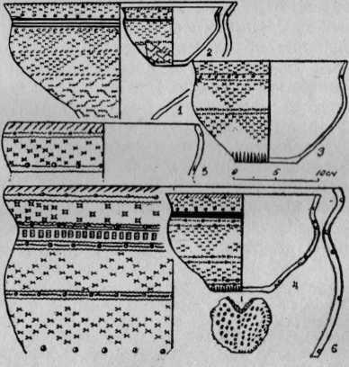 Рис. 5. Жертвенное место Хутор Бор-1. 1—4 — сосуды II типа; 5—6 — сосуды III типа