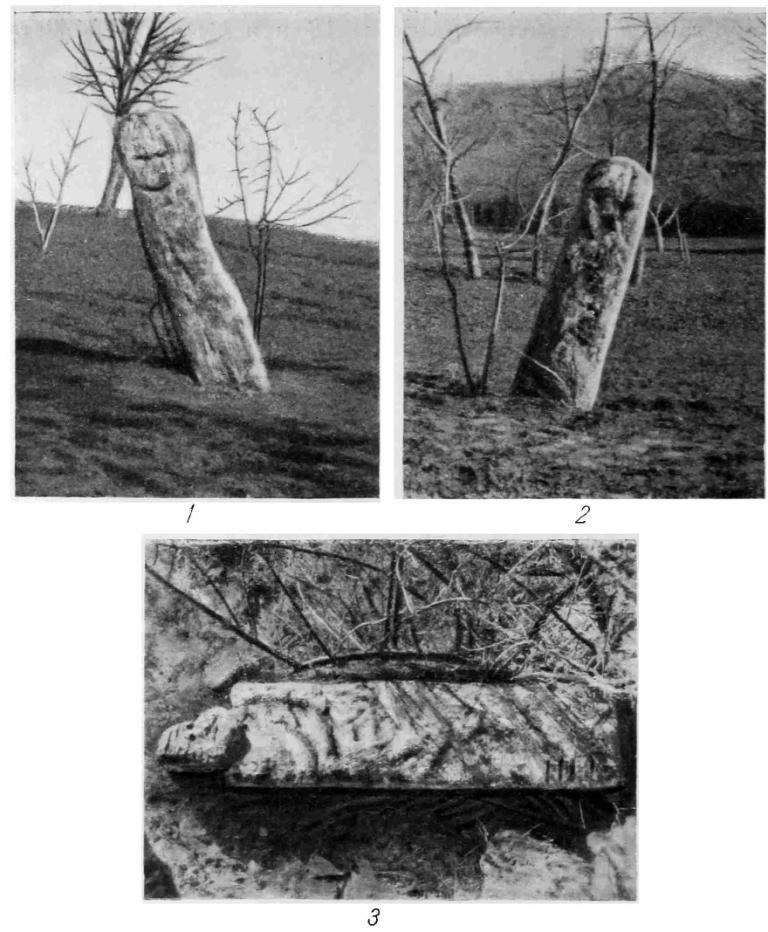 Рис. 43. Каменные фигуры древнеславянских идолов (фото). Первая фигура: 1 — вид с южной стороны; 2 — вид с западной стороны; вторая фигура: 3 — вид сверху