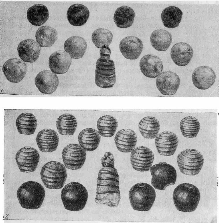 Рис. 2. Стеклянные шашки X в. 1 — Шестовицы, кург. № 6; 2 — Швеция, Бирка, погр. № 523