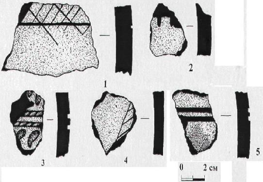 Рис. 2. Поселение Шаравинское. Подъемные сборы 2008 года: 1-5 - фрагменты керамической посуды