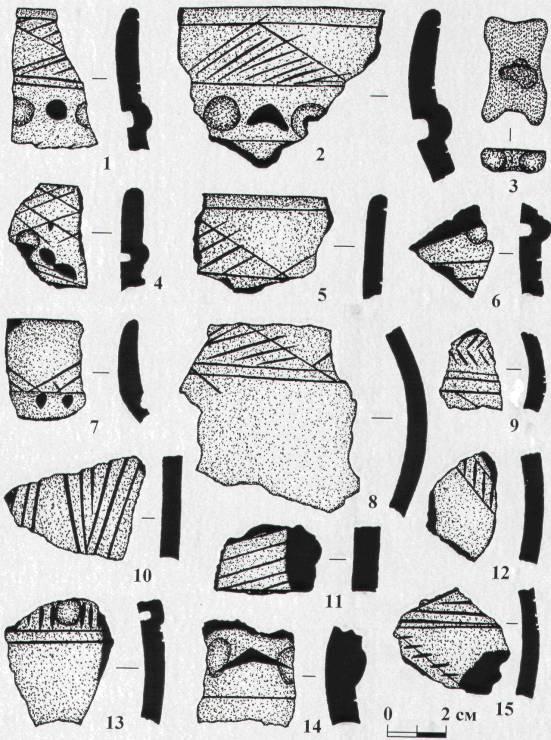 Рис. 3. Поселение Шаравинское. Подъемные сборы 2008 года: 1,2,4-15 - фрагменты керамической посуды, 3 - игральная кость (альчик)