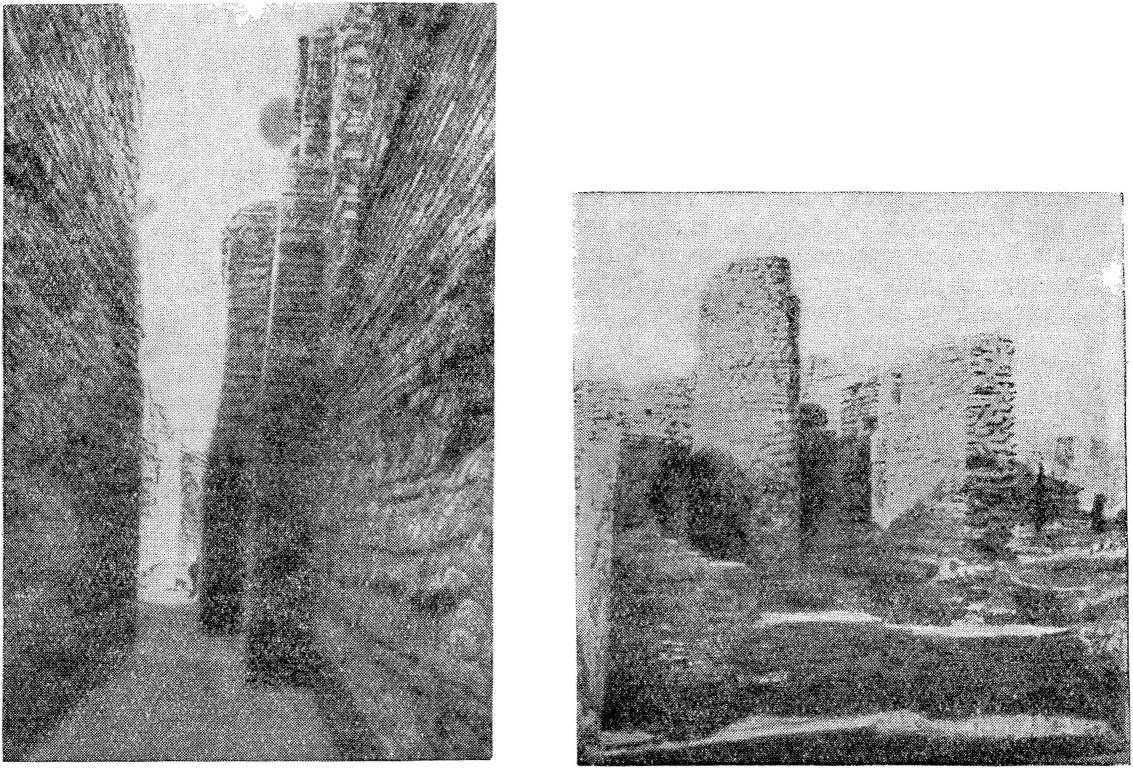 Рис. 3. Раскрытые остатки сооружений в Мохенджо-Даро
