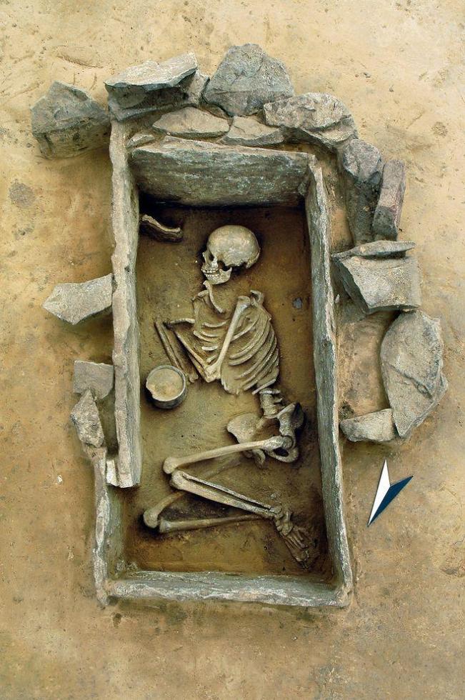Молодая женщина, похороненная в Германии более 4000 лет назад, принадлежала к скотоводам-мигрантам с востока.