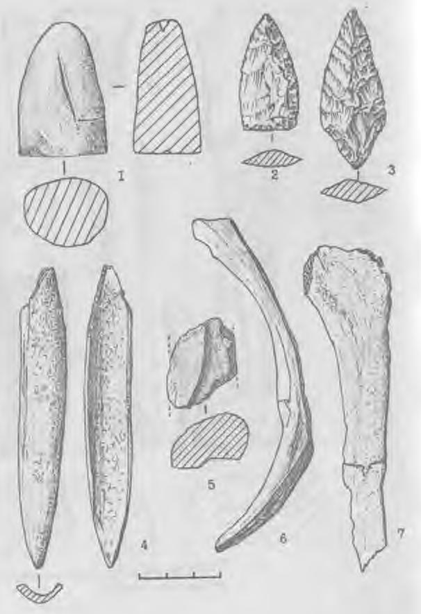 Рис. 6. Каменные (2-3), костяные (4, 6, 7) и керамическое (5) изделия из погребения литейщика