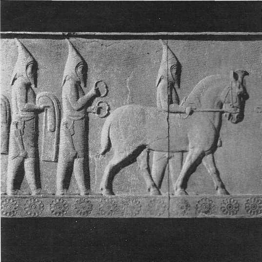 Саки, подносящие дары. Рельеф на лестнице в ападану в Персеполе