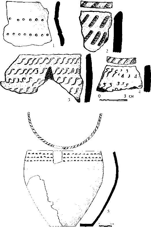 Рис. 2. Керамика с памятника Исток.