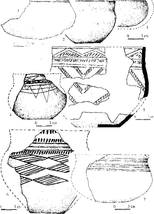 Рис. 1. Керамика с памятника Исток.