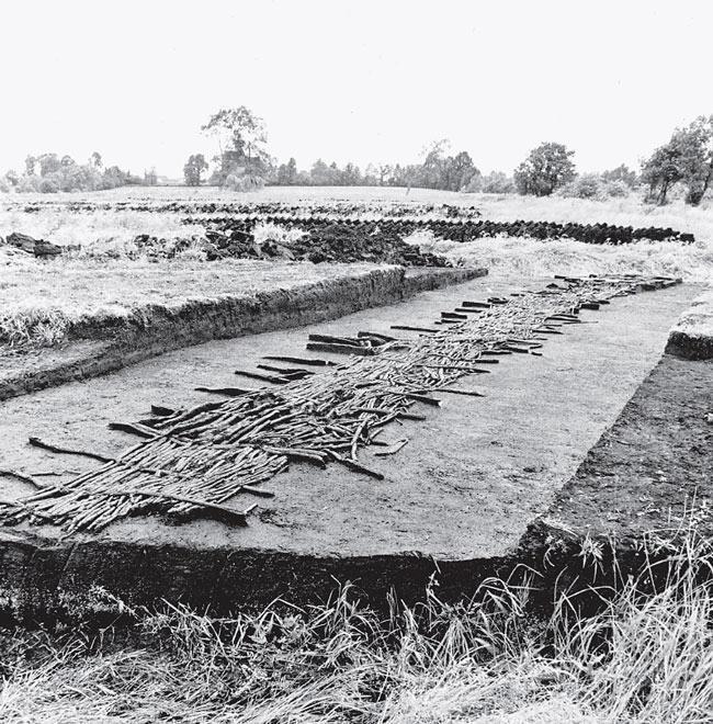 Рис. 4.2. Деревянная тропа в Coмерсетской долине на юго-западе Англии