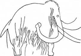 Рис. 12. Зображення мамонта на стіні печери Фон де Гом (Франція)