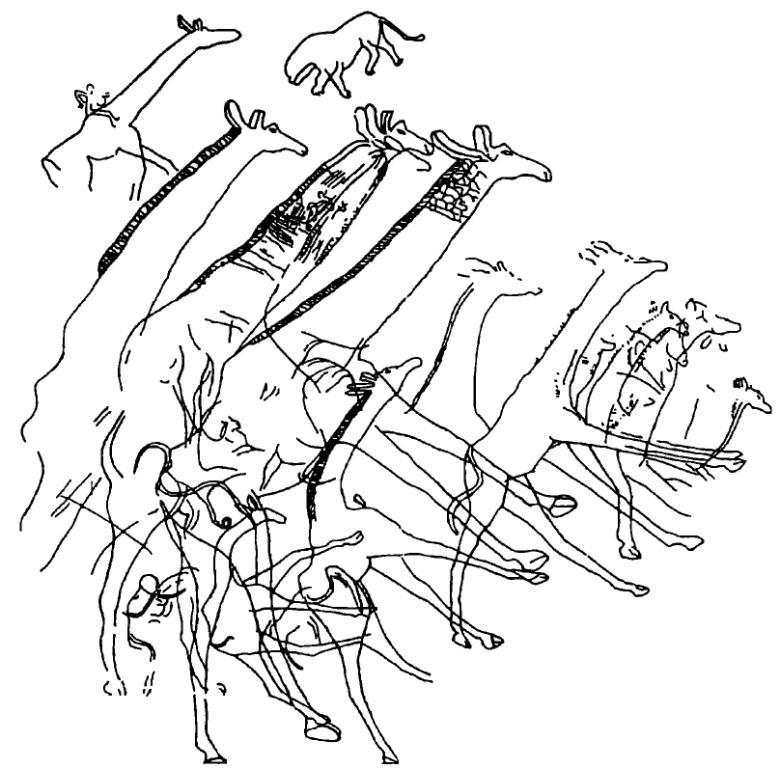Рис. 15. Горизонтальная плоскость площадью около 120 м3 с изображениями гигантских жирафов, Уэд Джерат, Алжир