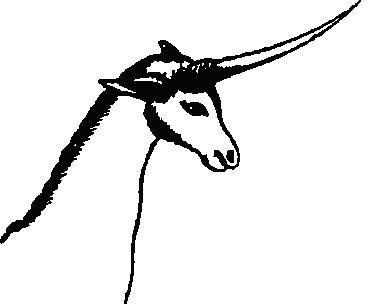 Рис. 22. Первая опубликованная в 1801 г. копия африканского наскального изображения, предположительно бушменского, из книги сэра Дж. Барроу