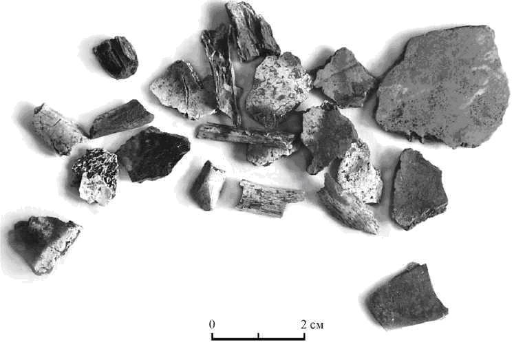 Рис. 6. Фрагменты с обугленными краями. Шизе IV, курган 188