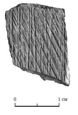 Рис. 7. Фрагмент обработанной кости из скопления кремированных костей. Шизе IV, курган 185
