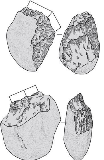 Рис. 11.3. Эти нуклеусы из ущелья Олдувай, Танзания, являются одними из самых древних орудий человека. Стрелками обозначены рабочие поверхности