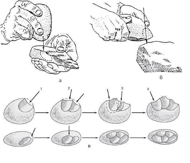 Рис. 11.4. Самые древние методы обработки камня: а — с использованием камня-отбойника; б— вариант работы с камнем-отбойником — удар нуклеусом по другому камню, так называемая техника наковальни; в — древнейшие орудия изготавливались очень просто. В верхнем ряду — вид сбоку. Во-первых, отделяются два отщепа (1 и 2). Во-вторых, камень переворачивают и отбивают еще два отщепа (3). В-третьих, пятый отщеп завершает полезную жизнь нуклеуса (4). В нижнем ряду показано то же самое, но вид сверху