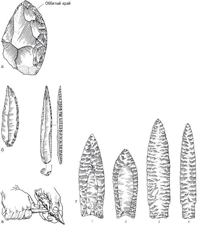 Рис. 11.7. Некоторые методы обработки каменных орудий: а — резкая ретушь мустьерского (средний палеолит) скребла (размер изображения — половина от реального); б — специализированные режущие орудия, изготовленные отжимом с заострением режущих кромок. Эти лезвия использовались в качестве наконечников копий 22 000 лет назад (реальный размер); в — отжимная ретушь (pressure-flaking technique); г — палеоиндейские наконечники: 1 — кловис, 2 — фолсом, 3 — скотсблафф, 4 — эден