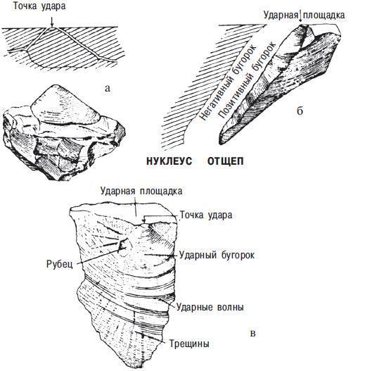 Рис. 11.1. Как разламывается камень, когда удар наносится по гомогенному типу породы: а — когда наносится удар, ударными волнами в камне образуется нуклеус удара; б — когда нуклеус бьют по краю, образуется отщеп, и камень разрушается вдоль края волны; в — части отщепа