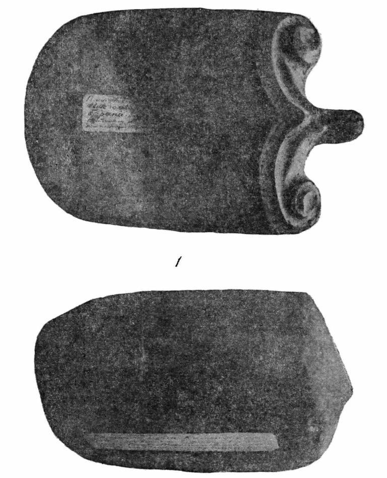 Рис. 2. Камень с выступом в виде головы барана