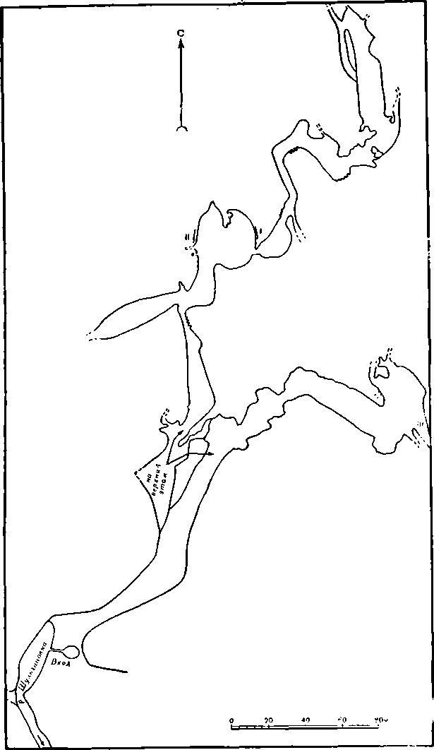 Рис. 3. План передней части пещеры. 1 — первая группа рисунков верхнего этажа; II — вторая группа рисунков верхнего этажа; III — рисунки на потолке большого дальнего грота нижнего этажа