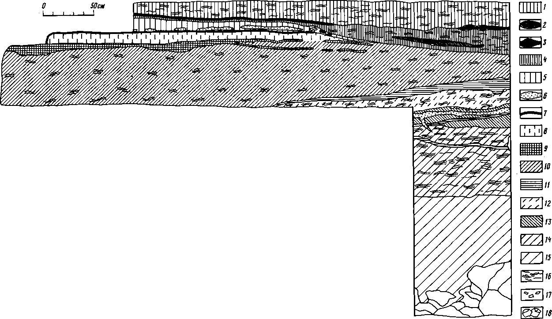 Рис. 2. Каповая пещера. Зал Знаков. Раскоп. Стратиграфическое положение верхнепалеолитического культурного слоя в разрезе отложений (северная стенка) 1 — суглинок коричневато-сёрый; 2 — прослойка буровато-коричневого суглинка; 3 — прослойка сизо-серой глины; 4 — суглинок серый; 5 — суглинок коричневый; 6 — прослойка песка; 7 — совмещенные прослойки черного сажистого и красновато-коричневого охристого вещества; 8 — суглинок коричневато-серый; 9 — культурный слой верхнего палеолита; 10 — суглинок светло-коричневый; 11 — глина буровато-коричневая; 12 — суглинок желтовато-коричневый; 13 — суглинок коричневый; 14 — суглинок коричневый с буроватым оттенком; 15 — суглинок коричневый неслоистый; 16 — обозначение слоистости; 17 — кальцитовые натеки; 18 — глыбы известняка