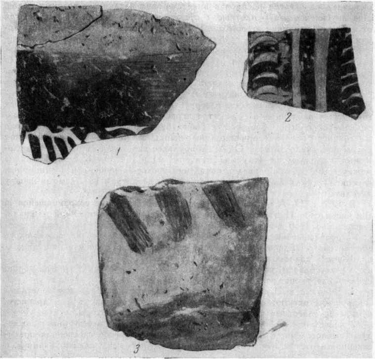Рис. 1. Расписная керамика из слоя Кюль-тепе I. 1 — с глубины 16,85 м; 2 — с глубины 18,8 м; 3 — с глубины 17,35 м.