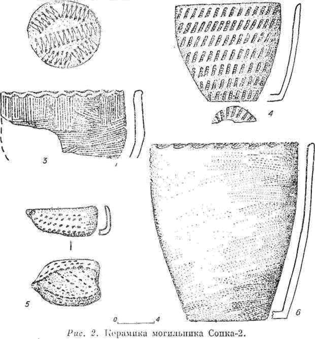 Рис. 2. Керамика могильника Сопка-2.