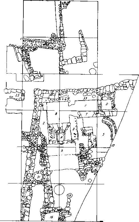 Рис. 26. Генеральный план раскопа