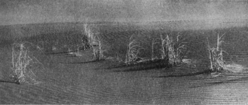 1.Деште Кевир — солончаковая пустыня, разделяющая Иран на две части — восточную и западную. По ее северной оконечности тянулся торговый путь, шедший из равнин Месопотамии, где реки Тигр и Евфрат сходятся у современного Багдада