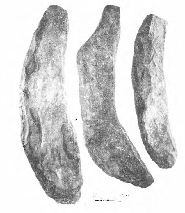 Рис. 2. Сланцевые заготовки кирок