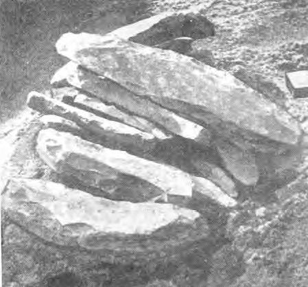 Рис. 1. Клад заготовок сланцевых орудий на стоянке Пегрема I.