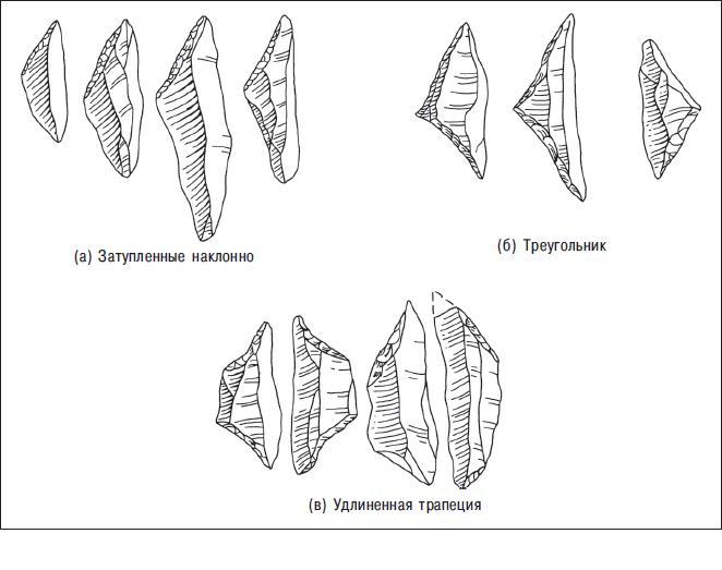 Рис. 10.3. Артефакты возрастом около 9000 лет из английского Стар Карра в реальных размерах. Их можно классифицировать по описательным типам как геометрические каменные орудия; по хронологическому типу как мезолитические микролиты, формы Стар Карр; и по функциональному типу как микролитические острия наконечников стрел