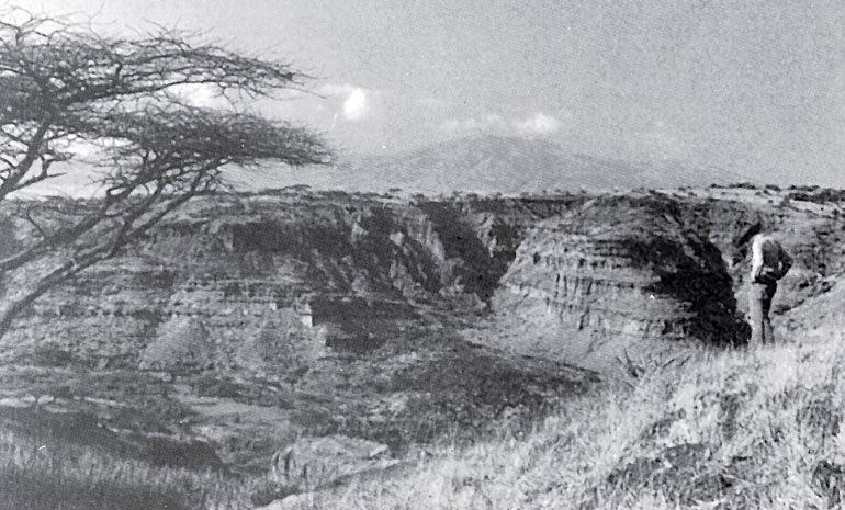 Рис. 10.5. Ущелье Олдувай, Танзания