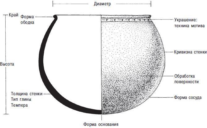 Рис. 10.6. Некоторые атрибуты глиняного сосуда. Специфическими атрибутами для этого горшка являются вогнутая расширенная часть, украшение из точек, слюдяная темпера, круглое дно и толщина стенки дна