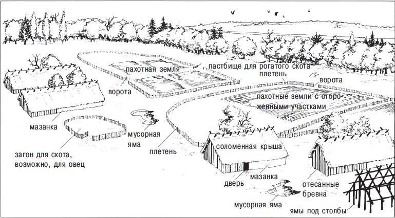 Рис. 12.3. Реконструкция центральноевропейского поселения земледельцев, приблизительно 6000 год до н. э. Такого типа поселения строили на мягких лёссовых почвах конца ледникового периода