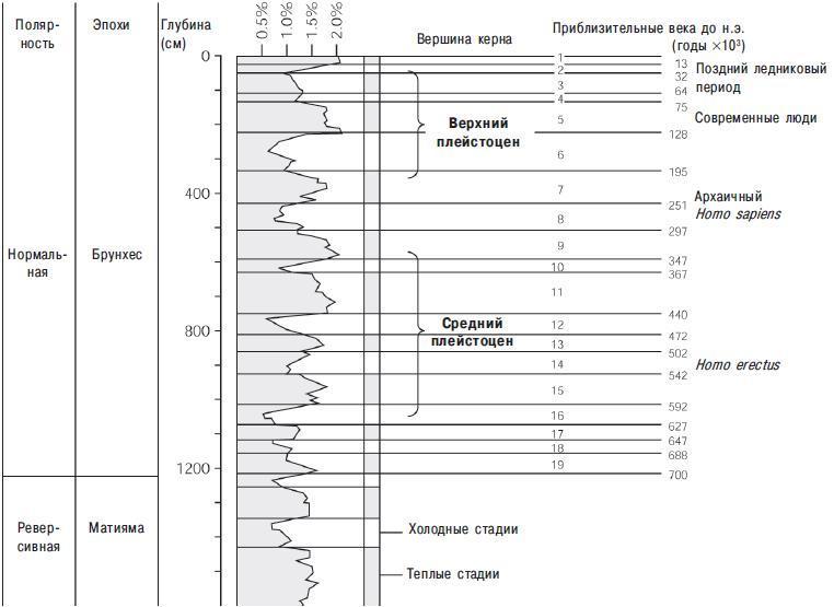 Рис. 12.4. Глубоководный керн, служащий стандартным эталоном для последних 780 000 лет, взят на Соломоновом плато в юго-западной части Тихого океана. Явление Матияма-Брюнхес произошло на глубине 11,9 метра. Выше него по пилообразной кривой идентифицируют по крайней мере восемь полных ледниковых (гляционных) и межледниковых (интергляционных) циклов