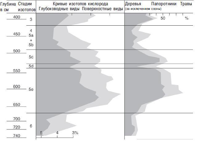 Рис. 12.10. Длинная пыльцовая последовательность для ледникового периода из Испании (слева) по сравнению кривыми изотопов кислорода, взятыми из глубоководного керна в Бискайском заливе (слева), видна близкая корреляция между ними