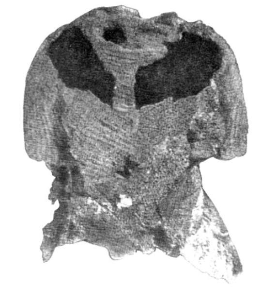 Рис. 14. Кольчуга из кургана Липовец (№ 47).