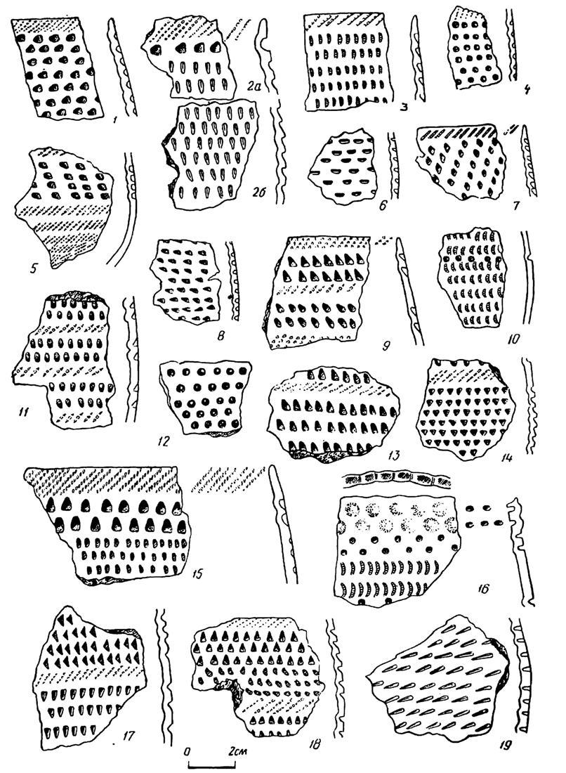 Рис. 14. Эпоха ранней бронзы. Тюменское Притоболье. Керамика с ямочным орнаментом 1—6, 16 — Ипкуль I; 7, 8 — Ипкуль VIII; 9—15, 17—19 — Андреевская II стоянка