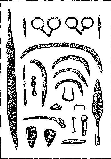 Рис. 15. Комплекс орудий земледельческого труда, предметов вооружения и конской сбруи из погребения в Бу, Норвегия (по Б. Хоугену)