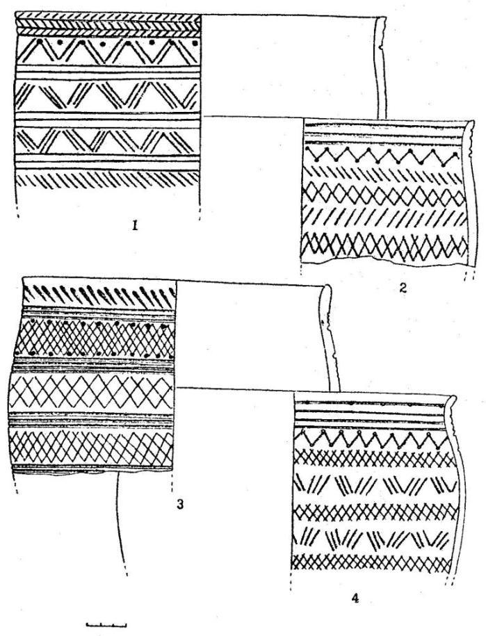 Рис. 4,Керамика фирсовского типа. Костенкова Избушка (1-4)