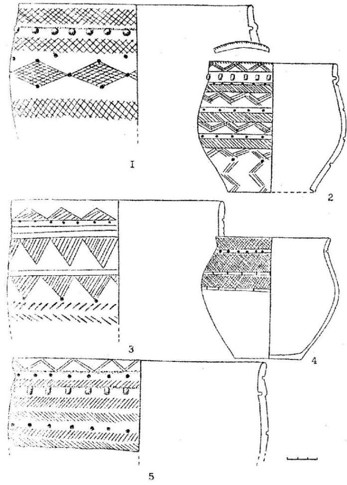 Рис. 8. Керамика иткульского типа: Костенкова Избушка (1,2,5) Фирсово XVII (3); Моховое III (4)