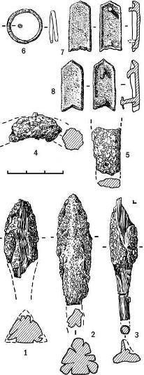 Рис. 1. Находки из разрушенного погребе-ния Красная Горка-I: 1-5 — железо; 6-8 - бронза
