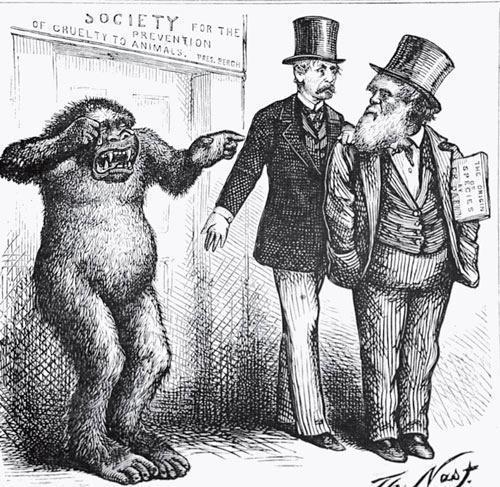 Рис. 2.5. Карикатура Томаса Нэста, высмеивающая дарвиновское предположение о том, что человек и обезьяна родственны между собой