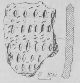 Рис. 4. Фрагмент доандроновской керамики памятника Крохалевка-4.